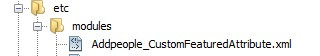 file structure for custom category attribute